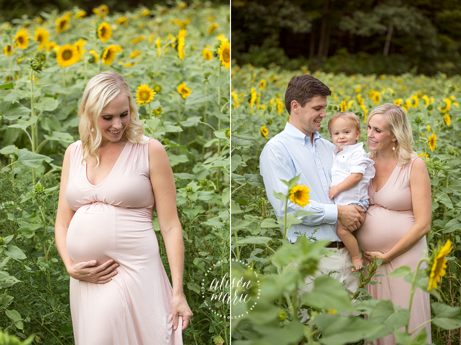 Sunflower field Maternity session