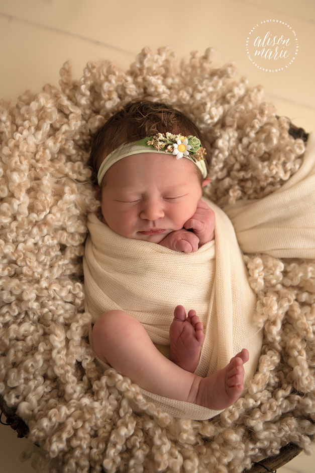 Alison marie photography is a newborn photographer servicing western ma northern ct natural newborn photography based in southwick ma