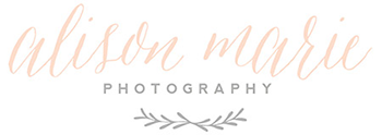 Alison Marie Photography Southwick MA wedding photographer